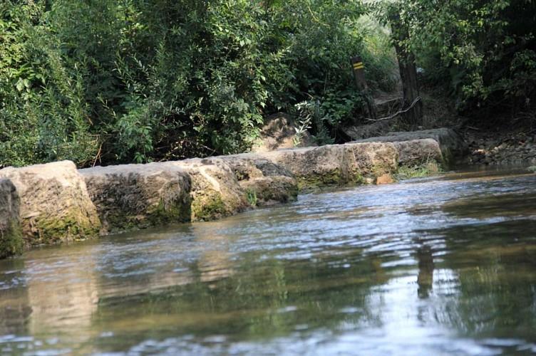 Menhir de Pierre Fiche et gués du Suran