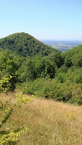 Château de Montfort, éperon barré celte ou site médiéval