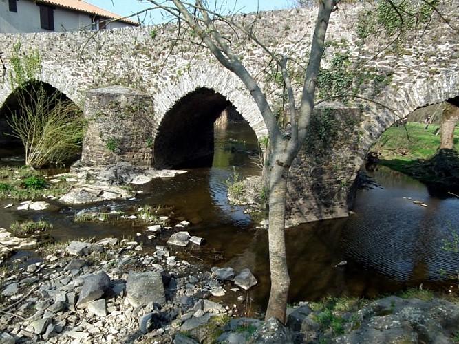Randonnée Une autre Loire : l'Avoye à St Rémy-en-Mauges