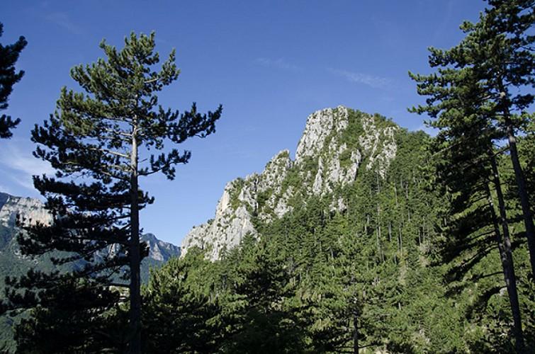 La Montagne Girard