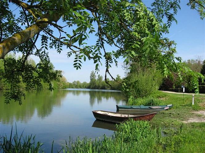 La petite Seine