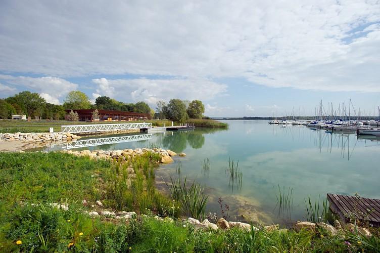 Balade au Naturel - Le tour du Lac de Madine