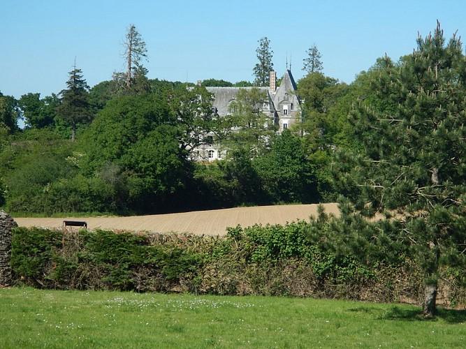 Randonnée Une autre Loire : Le bois de la Boulaie à St Laurent-du-Mottay