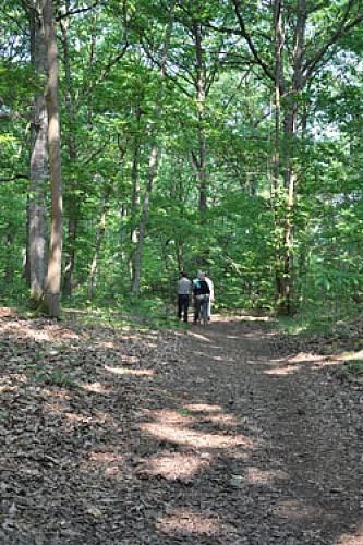 Etival-lès-le-Mans - La boucle du Bois de la Cornuère