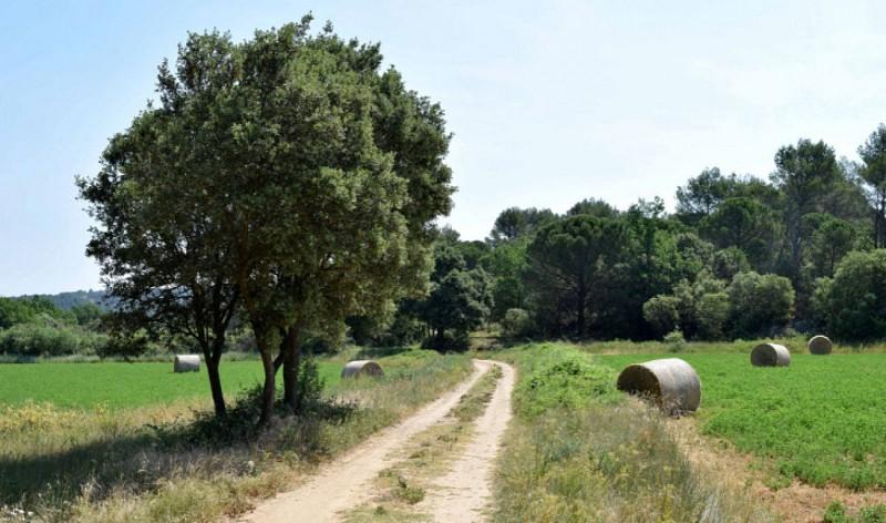 JOUQUES - Les senteurs de Provence