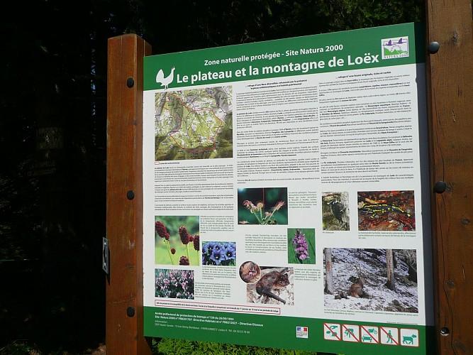 Montagne de Loëx and Chapelle de Jacquicourt