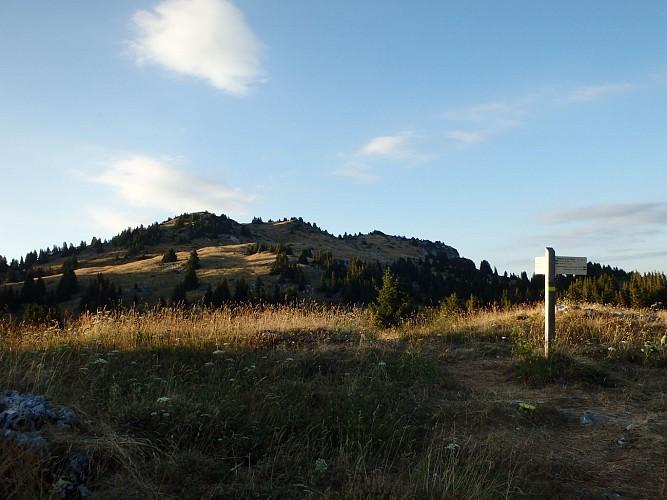 """""""Le Tour de Nifflon"""" Hike"""