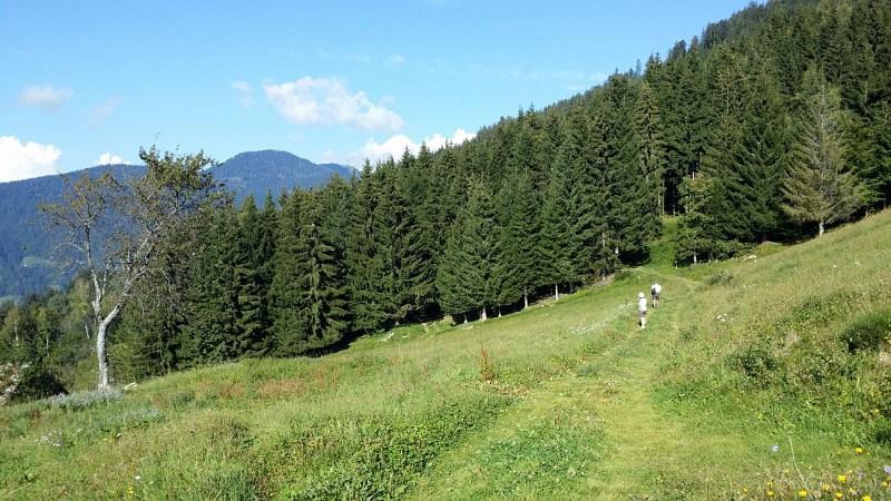 """Queige - """"Les Pointières"""" trail"""