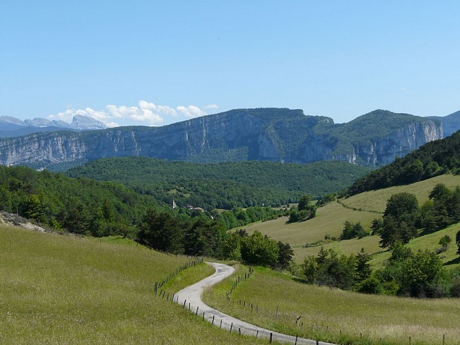 Massif forestier des Coulmes