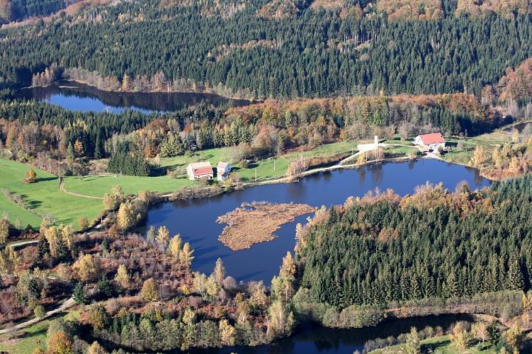 Trace équestre de Luxeuil-les-Bains / La Rosière - Vosges du sud