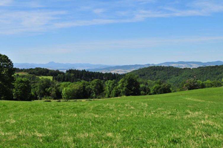 """Circuit VTT : """"Val d'Allier et collines du Livradois"""""""