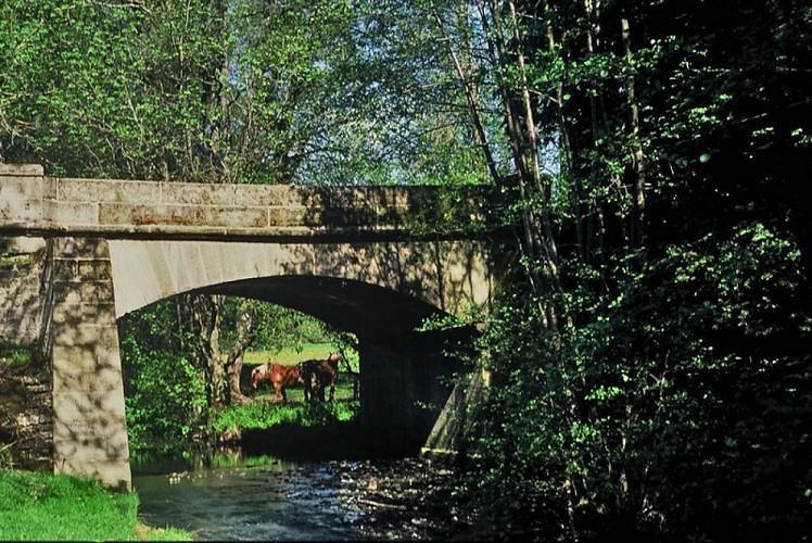 Boucle cyclable n°11 du Mont Vaulot (32 km) - Vosges du sud