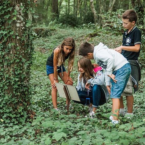 Randonnée pédestre - Sentier botanique de DEMIGNY 71150