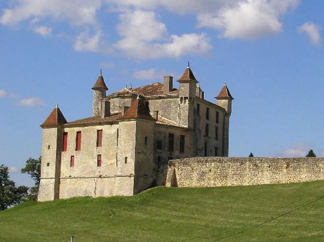 Eglises romanes et châteaux en Lussacais