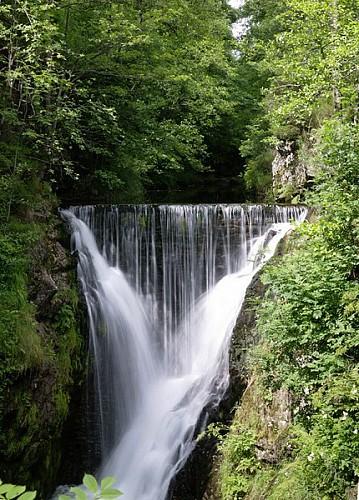 Boucle cyclable n°15 de la Petite Finlande (33 km) - Vosges du sud