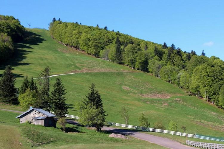 Boucle cyclable n°21 des Belles Filles - Vosges du sud