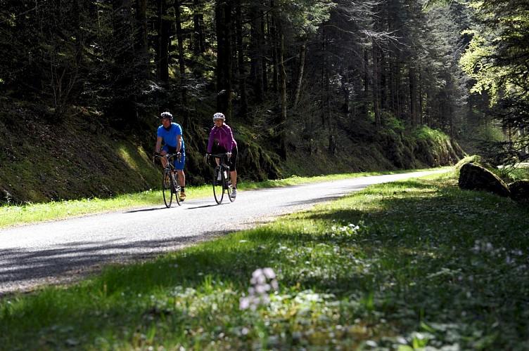 Itinéraire cyclable V50/Luxeuil-les-Bains/Belfort - Vesoul/Val de saône-Vosges du sud