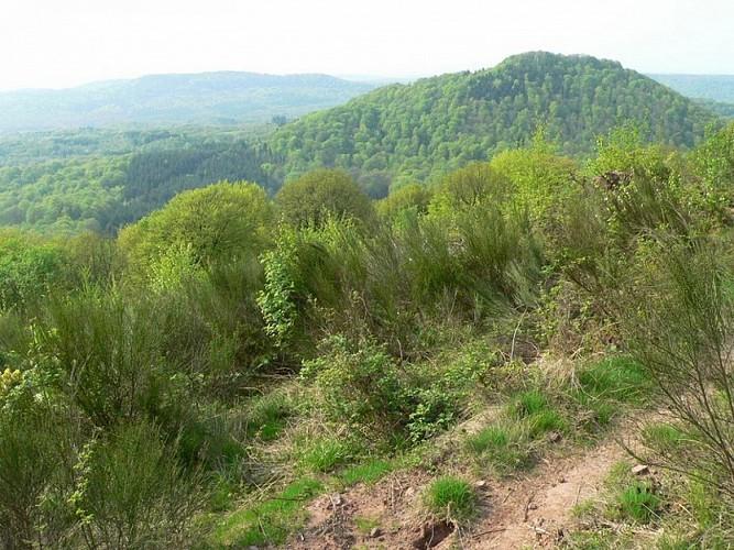 GR533 Nord-Sud en Haute-Saône - Vosges du sud