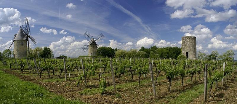 Néac et l'appellation Lalande-de-Pomerol