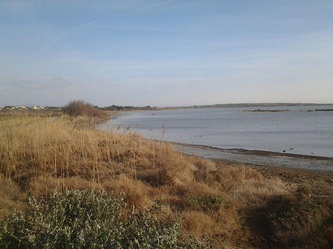 FR-Prendre l'air sur les rives de l'étang de l'Arnel.