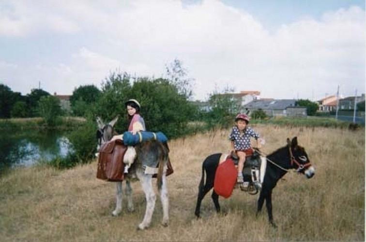 Découverte de la vallée de la Loire aux pas des ânes