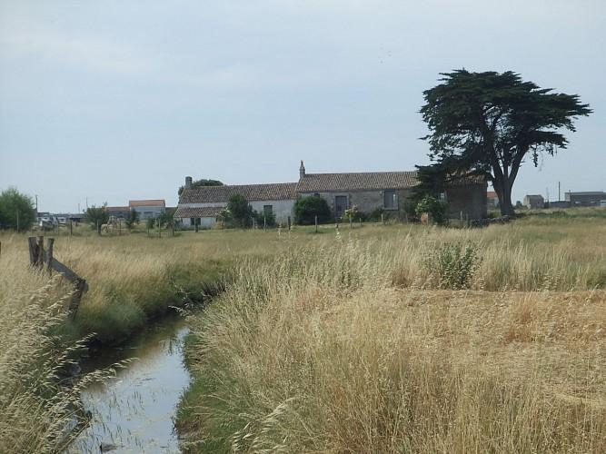 Polder breton