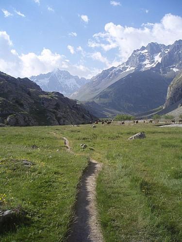 Sur la boucle du Plan de l'Alpe