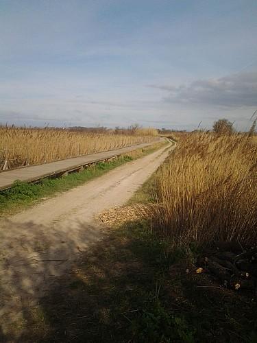 FR - Le sentier de la réserve du Méjean.