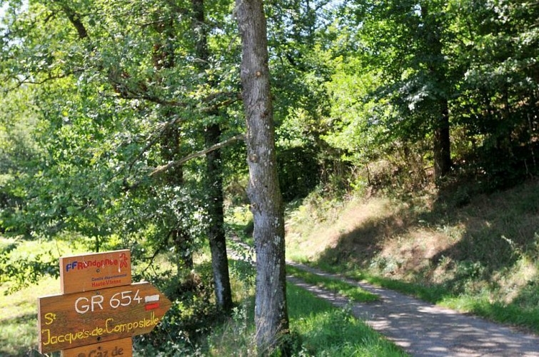 Chemin de Caux - La Mazière