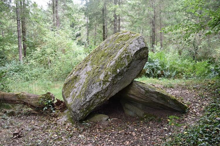 Circuit du dolmen de la Goupillère