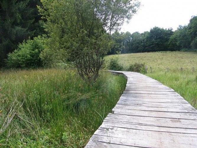 Circuit le tour du lac de saint Pardoux