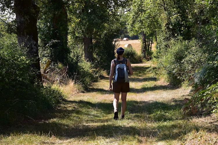 chemin des moulins à bellac 3