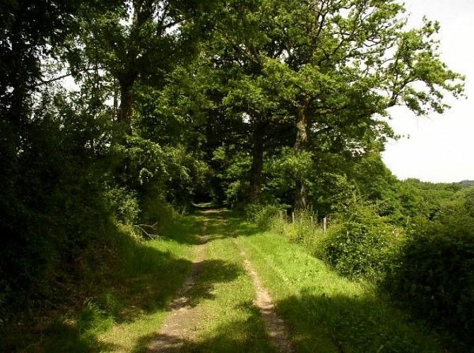 sentier de saint paul 2
