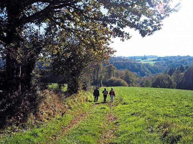 Sentier Boucle du Parleur