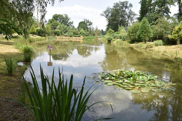 Sentier des étangs à Saint-Gence