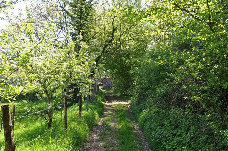 Sentier Entre Puys et Landes