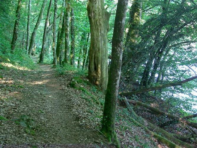 """Sentier """"Les Hauts de Bujaleuf"""""""
