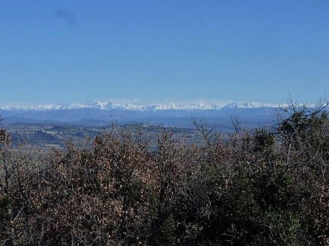 Rando : Panorama à 360° à Vitrolles en Luberon