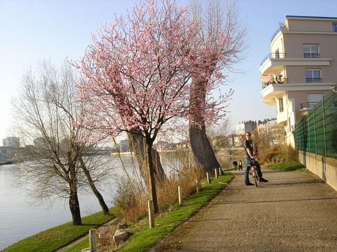 La Seine: sur les chemins de traverse