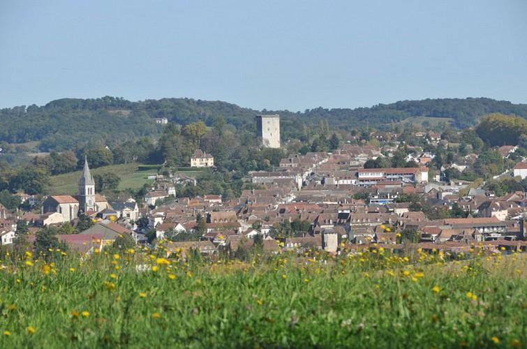 GR 654 De Orthez à Sauveterre-de-Béarn
