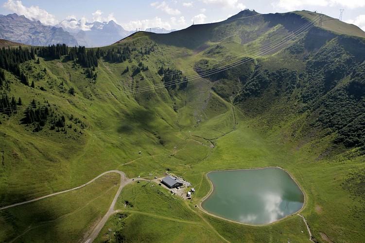 Airon lake and alpine pasture