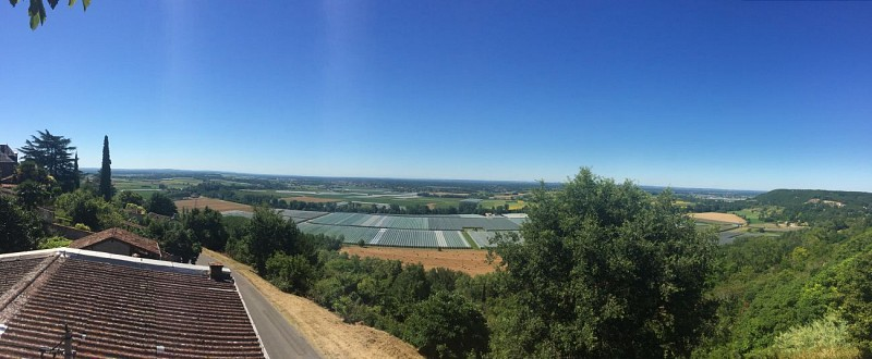 PR1 - Circuit de la forêt des Mothes à Lafrançaise (8,5km)