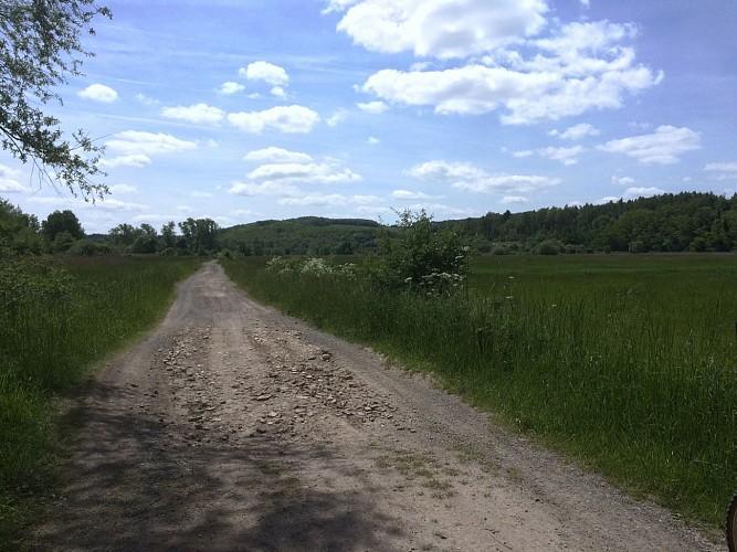 Circuit VTT le long de la Meurthe - Dombasle