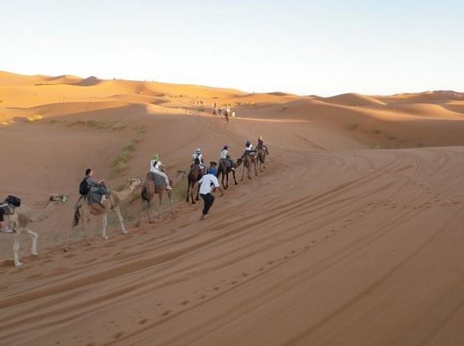 voyage parfait au sud du maroc