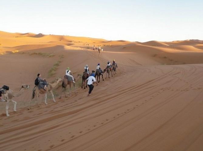 excursion au desert marocain
