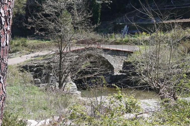 Le Sentier d'Appias