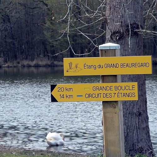 Randonnée pédestre - Circuit des 7 étangs à DEMIGNY 71150