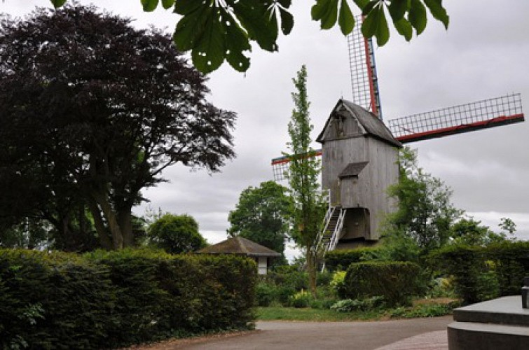 moulin flandres1