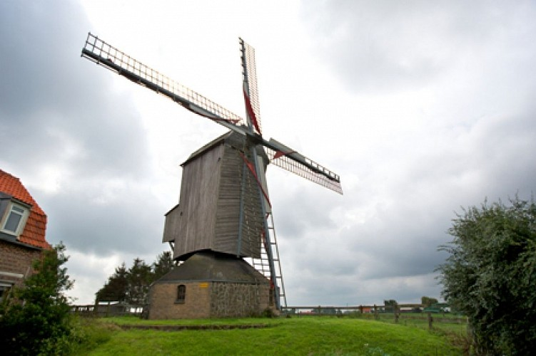 Moulins de Flandre N°2