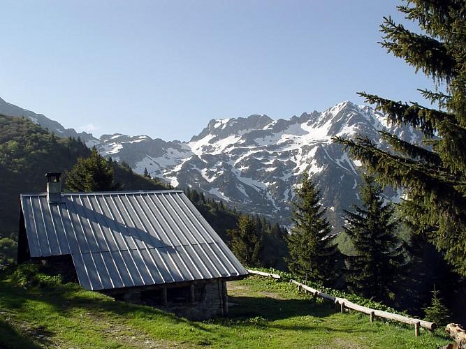 """Mountain pastures of """"Presle"""" et """"du Verneil"""""""